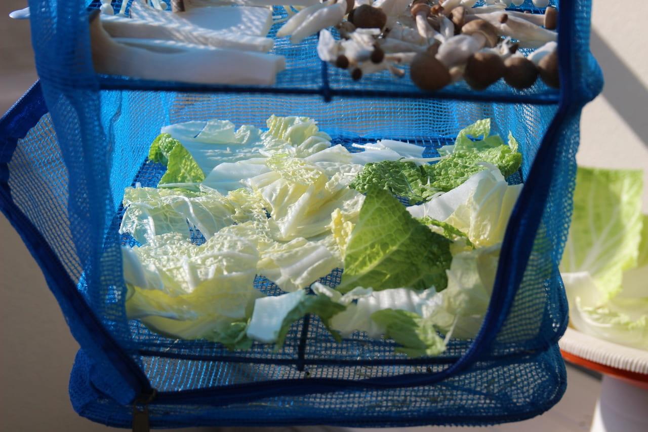 干し野菜 白菜